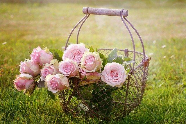 Les Mureaux ! Achetez des fleurs à fleurs en seine